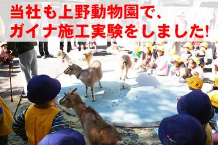 上野動物園でのガイナ実験